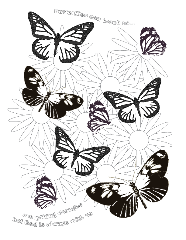 creation butterflies